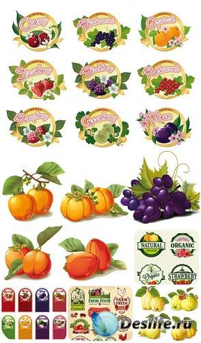 Этикетки, фрукты и ягоды в векторе / Labels, fruits and berries vector