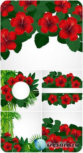 Гибискус, тропические растения в векторе / Hibiscus, tropical plants vector