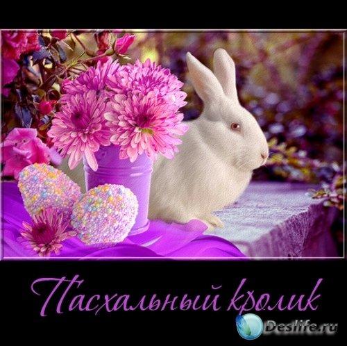 Пасхальный кролик - клипарт на прозрачном фоне