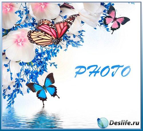 Рамка для фотографии - Нежное очарование