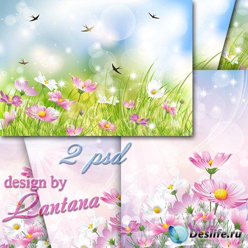 PSD исходники - Травы густые, цветы луговые, синего неба простор