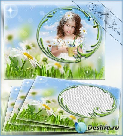 Рамка летняя для photoshop - Нежный цвет ромашек