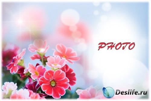 Женская фоторамка - Нежность цветов