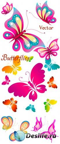 Разноцветные, красивые бабочки в векторе