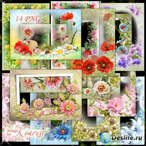 Набор цветочных png рамок для фотошопа - Нежность летних цветов