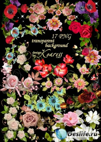 Набор цветочных кластеров и уголков на прозрачном фоне - Такие разные цветы