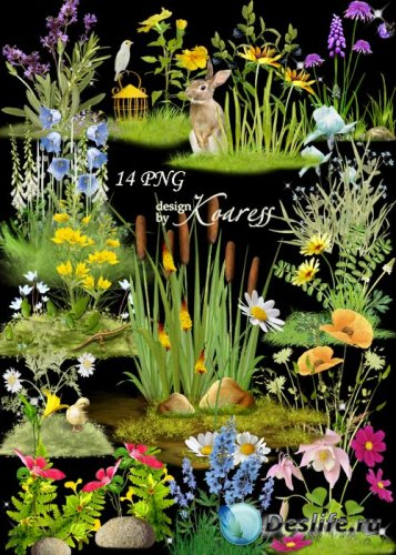 Цветочные png кластеры с полевыми и лесными цветами - Цветочная поляна - ча ...