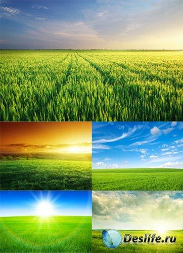 Клипарт - природа, закат и рассвет