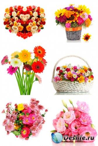 Красивые букеты из цветов