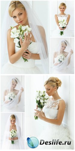 ������� � ������� ����� ������ / Bride with a bouquet of white flowers - Stock Photo
