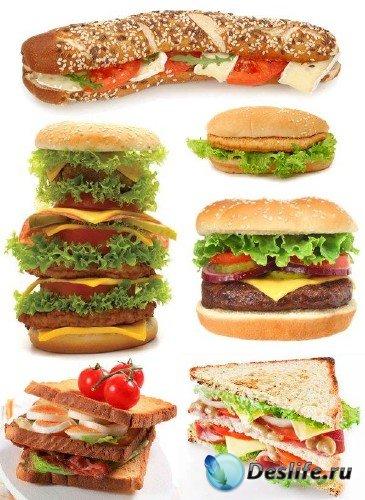 Фаст-фуд: Бутерброд, Гамбургер, Чизбургер, Сэндвич