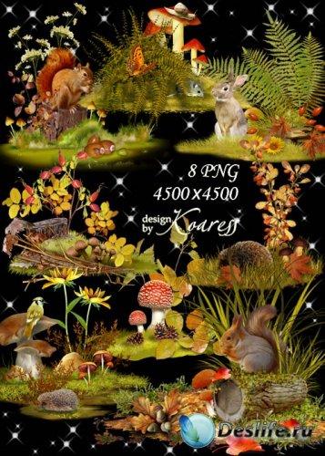 Осенние композиции для дизайна с цветами, ягодами, листьями - На лесной пол ...