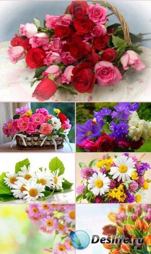 Обои для рабочего стола красивые цветы. Часть 20