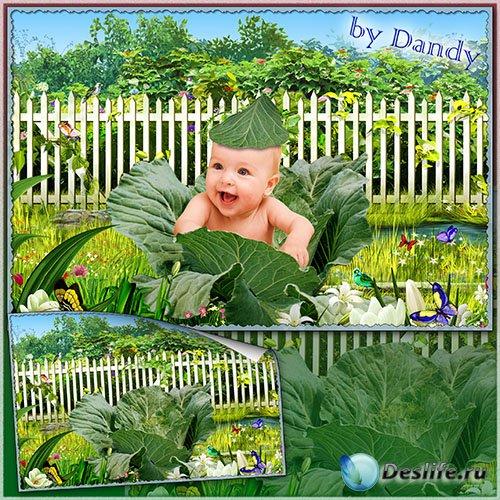 Шаблон для фотошопа - Малыша нашли в капусте