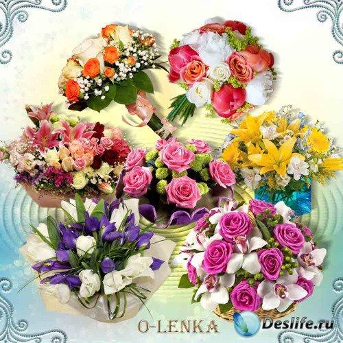 Цветочный клипарт на прозрачном фоне - Волшебное созвездие ароматов