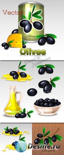 Подборка векторного клипарта – Веточки черных оливок