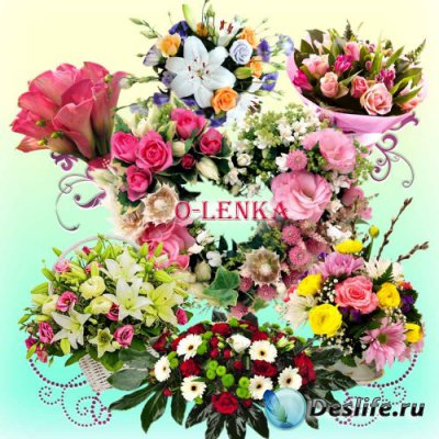 Цветочный клипарт на прозрачном фоне - Многоцветье красок