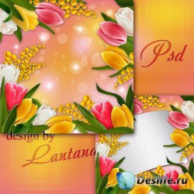 PSD исходник - Тюльпаны - дивные цветы, предвестники рождения весны