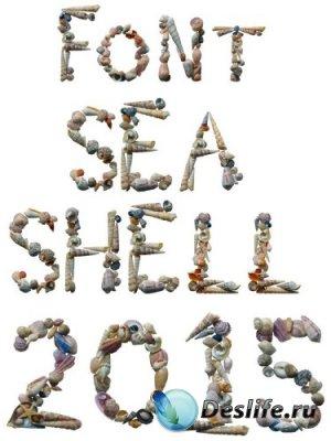 Морские ракушки (буквы и цифры) на прозрачном фоне