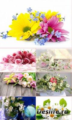 Обои для рабочего стола красивые цветы. Часть 24