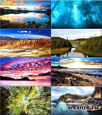 Красочные обои - Красота природы #52