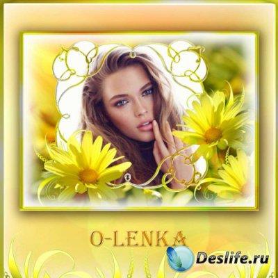 Рамка для фотошопа - Желтые ромашки