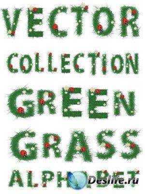Алфавит в векторе: Трава, ромашки, божья коровка