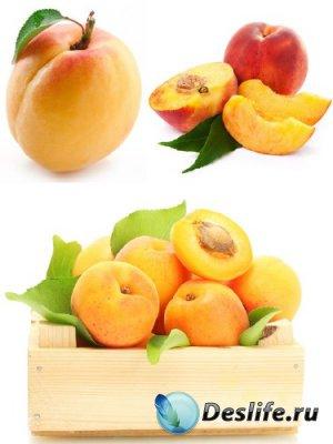 Абрикос и персик (подборка изображений фруктов)