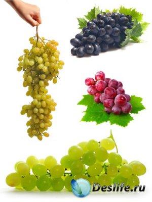 Виноград и виноградные гроздья на белом фоне (подборка изображений)