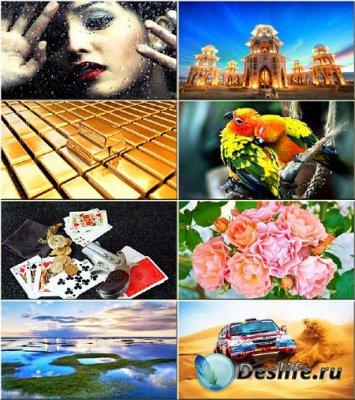 Красочные обои - Сборник на разные темы #77