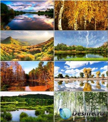 Красочные обои - Красота природы #167