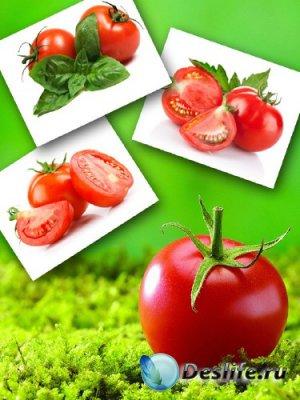 Сочный помидор (подборка изображений)