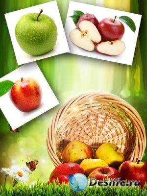 Душистое яблоко (подборка изображений)