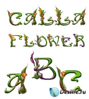 Алфавит: Цветы Каллы (прозрачный фон)