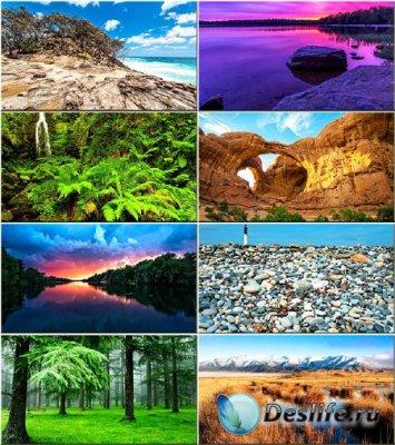 Красочные обои - Красота природы #187