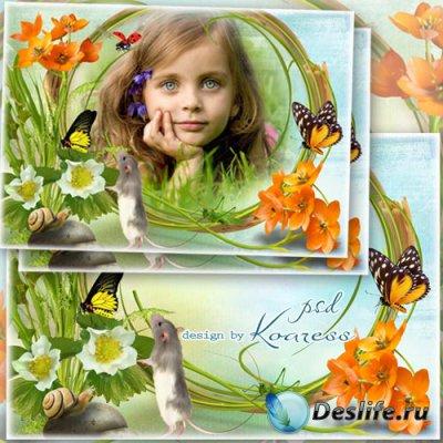 Детская летняя рамка для фотошопа - Летний луг