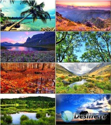 Красочные обои - Красота природы #237
