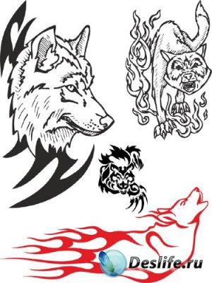 Тату: волк, лиса (векторные отрисовки)