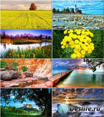 Сборник обоев - Истинная красота природы #39