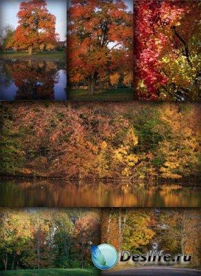 Осенние пейзажи (подборка изображений)