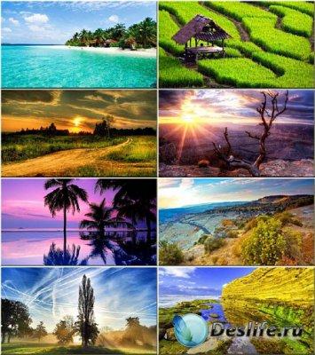 Сборник обоев - Нежная красота природы #74