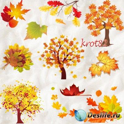 Осенний клипарт на прозрачном фоне  – Деревья и листья