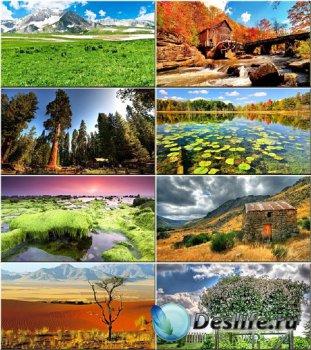 Красочные обои - Вся красота природы #22