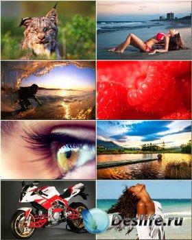 Красочные обои - Сборник на разные темы #102