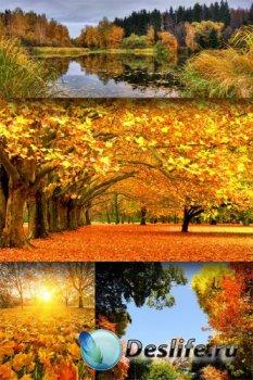 Прекрасные фото - пейзажи золотой осени (подборка)
