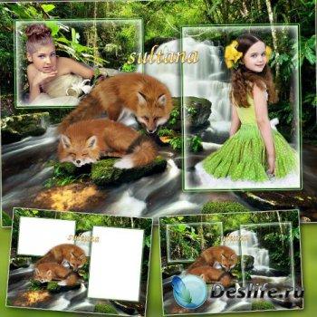 Рамка для фотошопа на 2 фото - Лисички у водопада