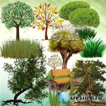 Трава, деревья в png