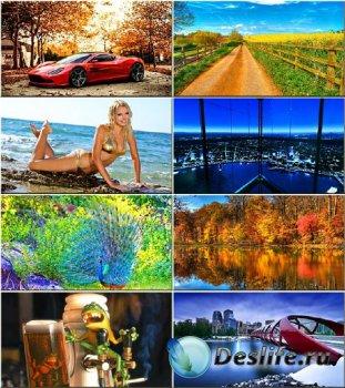 Красочные обои - Разнотематическая коллекция #72