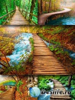 Красивые мостики (подборка изображений)