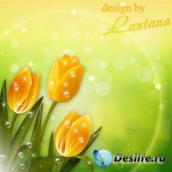 PSD исходник - Жёлтые тюльпаны, они мне греют душу